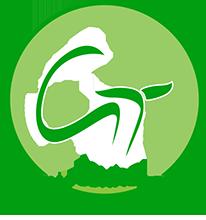 Green Technologies - Russia